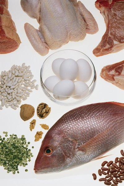 What does essential mean in regard to nutrients amino for Does fish have protein