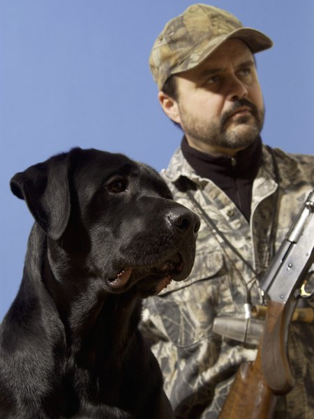 Blind retrieve drills teach dogs to run hard and fast toward the trophy.