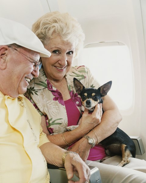 Airlines won't let you pull out your dog for cuddling mid-flight.