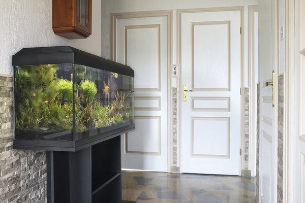 What Size Led Lights Do I Need For My Aquarium Pets