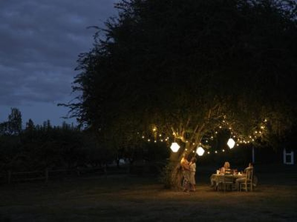 The guide to landscape lighting troubleshooting and outdoor lighting solutions home guides sf gate