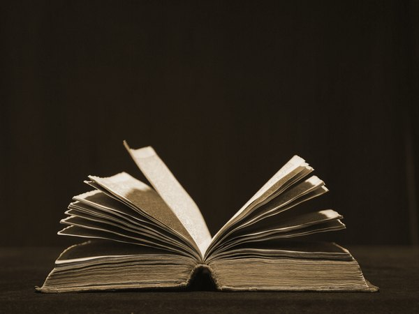 I need an essay Title for the book Speak (Novel )?