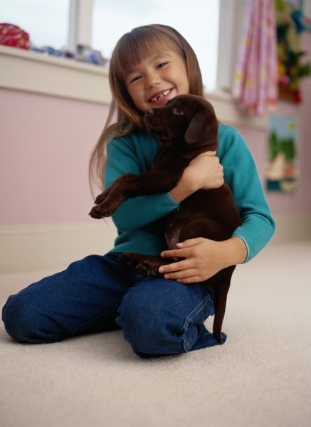 It is important for puppies to have positive experiences with responsible children.