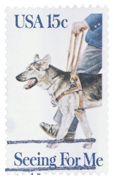 The U.S. Postal Service has honored the guide dog.