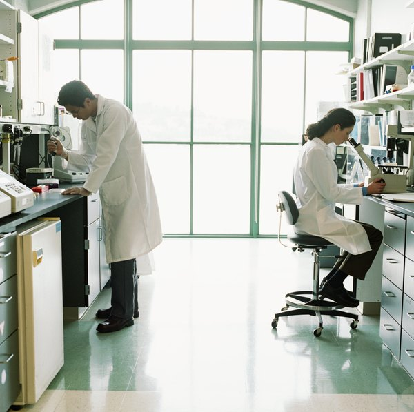 Biomedical Engineering types of research article