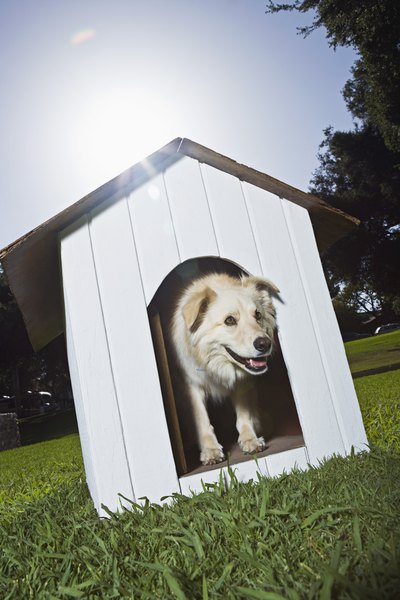 Provide Fido with a dog house to keep him cool when outdoors.