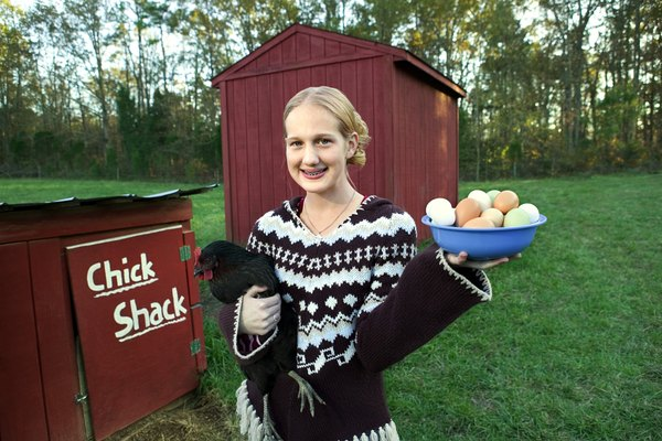Do All Female Chickens Lay Eggs Every Day? - Pets