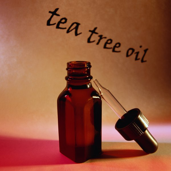 For all its good, tea tree oil can be lethal to your dog.