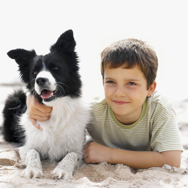 With patience and vigilance on your part, dogs and children can bond.