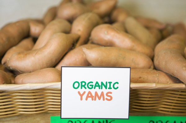 Sweet potatoes and yams offer a sweet and healthy treat ingredient for dogs.