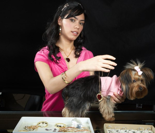 Pampering your dog doesn't necessarily mean putting on some jewels.