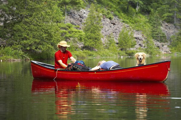 You can train a dog for a boat of any size.