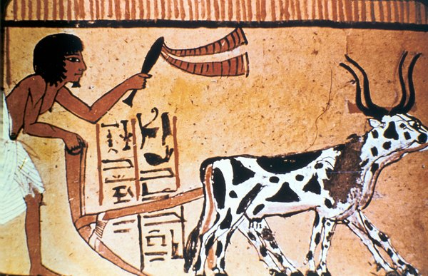 Impact of the Nile River on Ancient Egypt