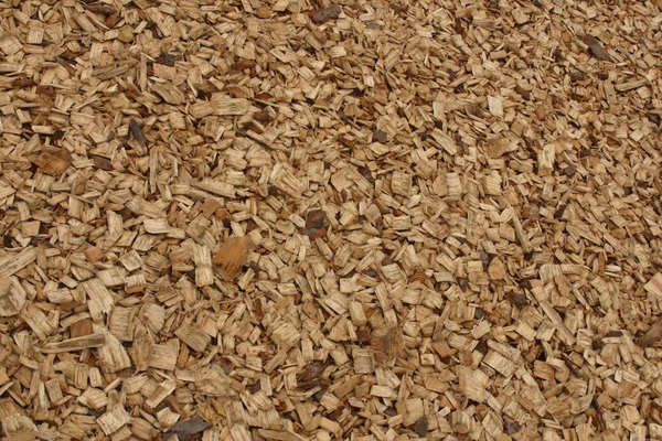 Wood chip collects scent, which may be attractive to your dog.