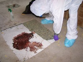 crjs crime scene write up Crime scene evidence: law and trial (crjs 373) crime scene evidence: law and trial (crjs 373) crime and science (frsc 202) crime and science (frsc 202) criminal procedure (crjs 475) criminal.