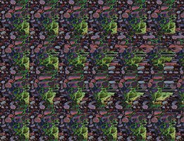 Stereograms create an illusion of 3D depth on a 2D image.