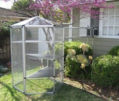 Buy an Outdoor Cat Enclosure Cheap