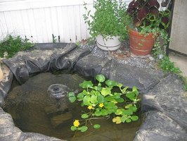 How to build a small pond under 200 gallons ehow for Koi pond gallons