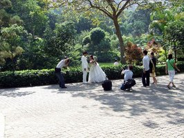 Park Wedding Example
