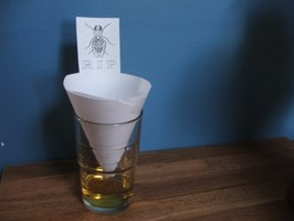 Create a Fruit Fly Trap