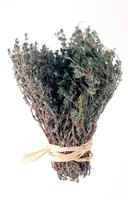 Thyme is found growing wildly abundant in the mountainous regions of Greece.