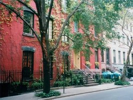 It is not legal for residents to remove trees on their own without a permit in New York City.