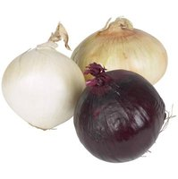 You can stuff and bake any variety of onion.