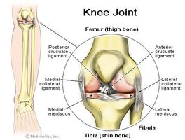 Knee Cartilage Pain