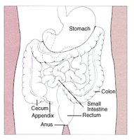 Signs & Symptoms of Colon Cancer in Men