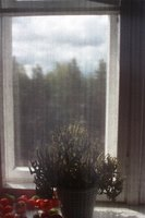 A screened window.