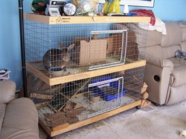 A two-level rabbit hutch