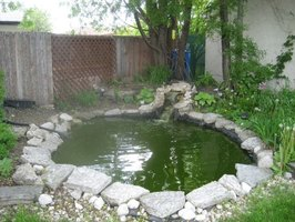 A small waterfall is an excellent way to aerate a pond.