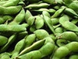 Soybeans Help Lower Levels of Estrogen Hormones