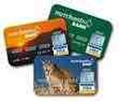 Make Money from your Debit Card