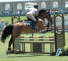 Building your own jumping standards is inexpensive and rewarding.