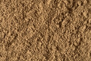 Cocoa powder is full of vitamins and minerals.
