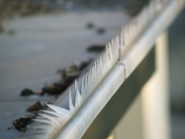 Your rain gutters protect your roof from damage.