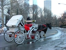 Romantic Places to Get Married in Chicago