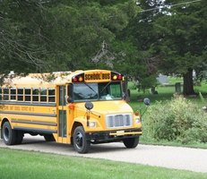 Large buses, including school buses, are not required to have seat belts.