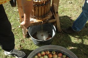A homemade cider press helps squeeze larger quantities of apples for home use.