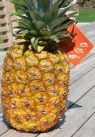 Pineapples can be home grown with the right care and fertilizer.