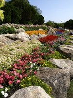 Create rock gardens and plant ground cover plants to reduce water loss and soil erosion.
