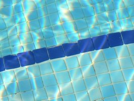 Pool filters and pumps keep the water clean.