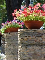 Flowers can bring life into a dull patio.