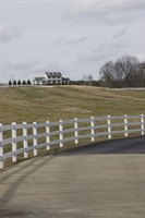 Driveway fencing lines the sides of your driveway.