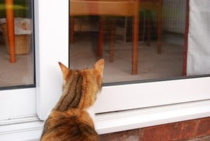 It is not difficult to train an outdoor cat to live indoors.