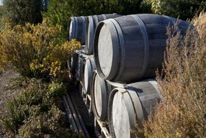 Old wine barrels can be used to store water for gardening.