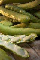 Peas come in pods in nature.