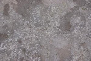 Warm up dull gray concrete with semitransparent stain.