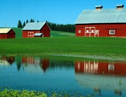 There are many benefits to a healthy farm pond.